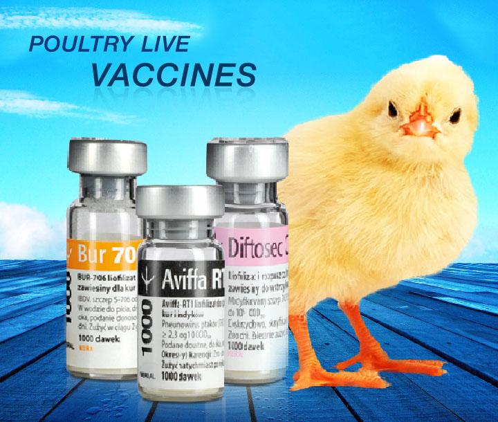 Merial Vaccines – Emploiaude